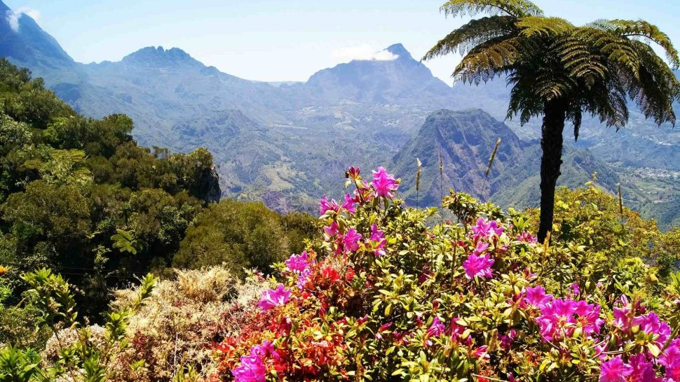 Best Time to Travel to Reunion Island – Best Travel Guide