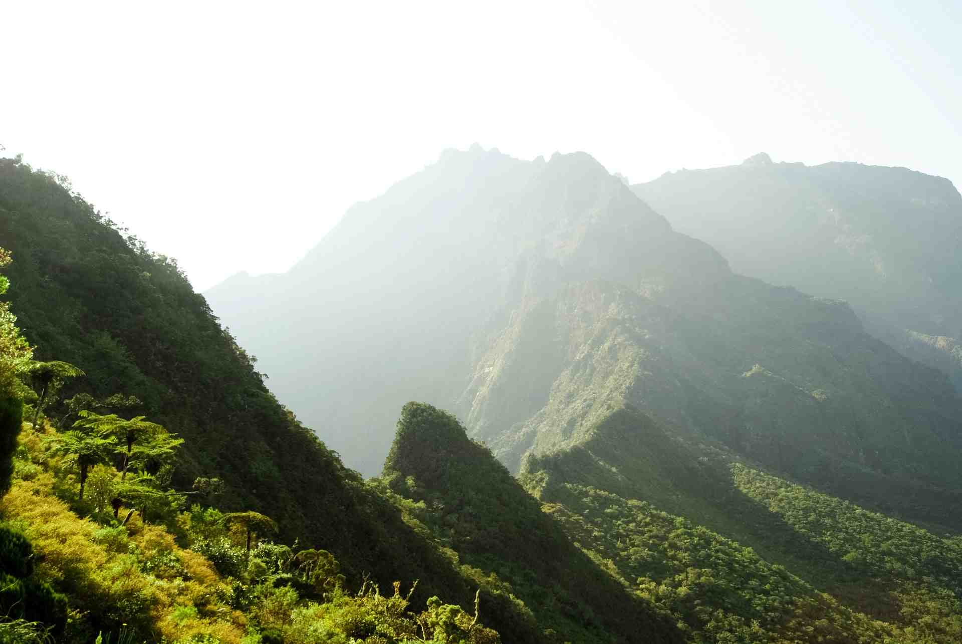Best Time to Travel to Reunion Island